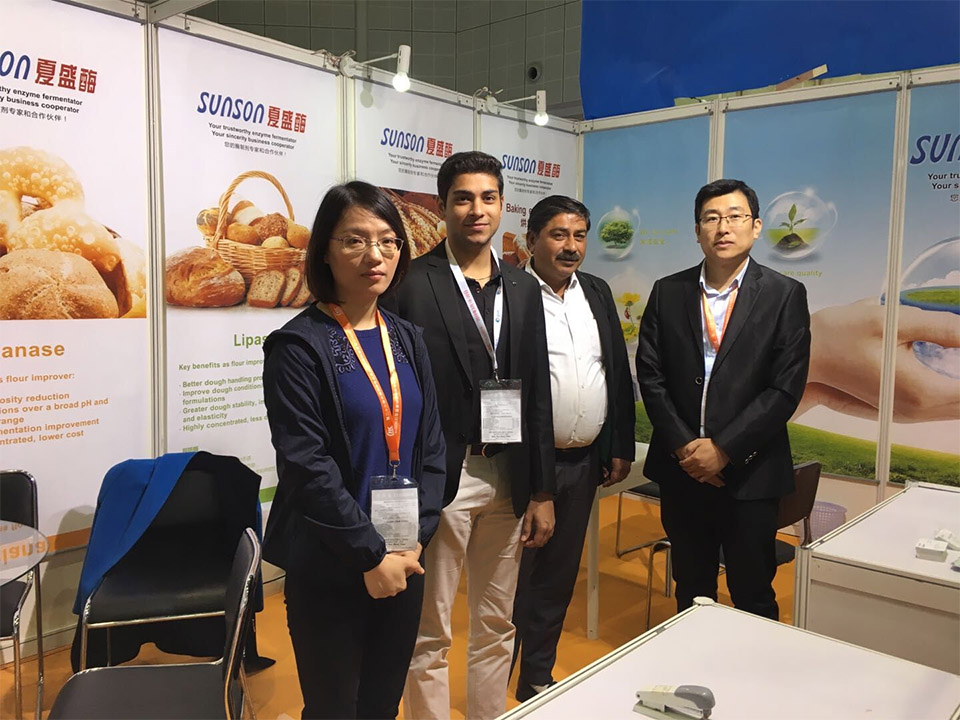 Brief Report of Food Ingredients China 2018