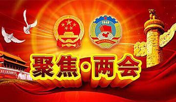 出席全国两会的天津代表委员热议夯实基层vwin000