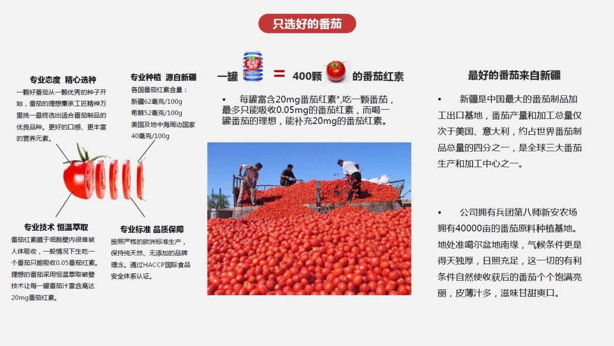 番茄的理想