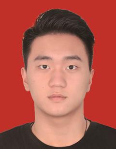 王振汉先生