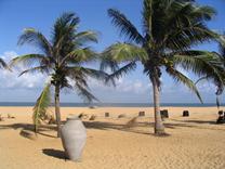 印度洋上的珍珠斯里兰卡休闲游(6天4晚)