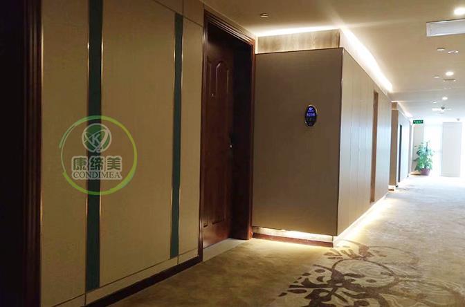 新润桦大酒店|酒店项目