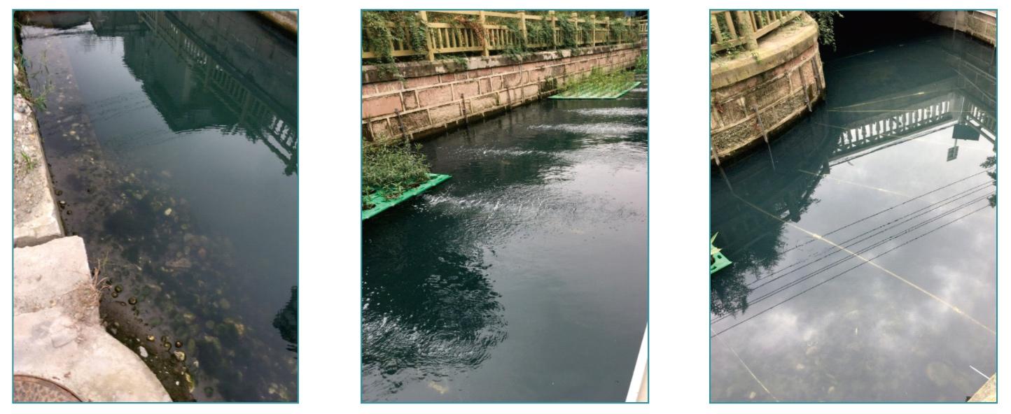 上海松江黑臭河道治理项目