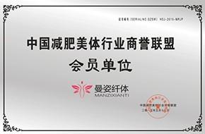 中国亚博体育app苹果版本美体行业商誉聪明