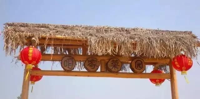 【高斯贝尔Family】纵情山水,凤凰山里的农家乐!