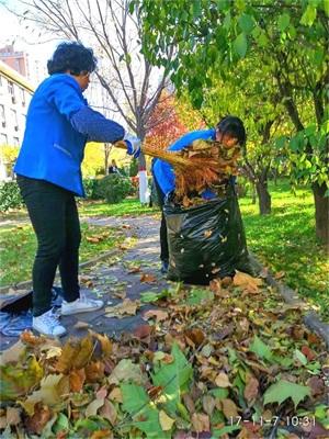 平阳路分公司保洁人员清理花园落叶