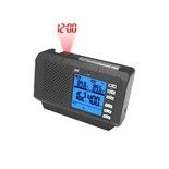 FT036 Weather Radio with Indoor Temperature Humidity