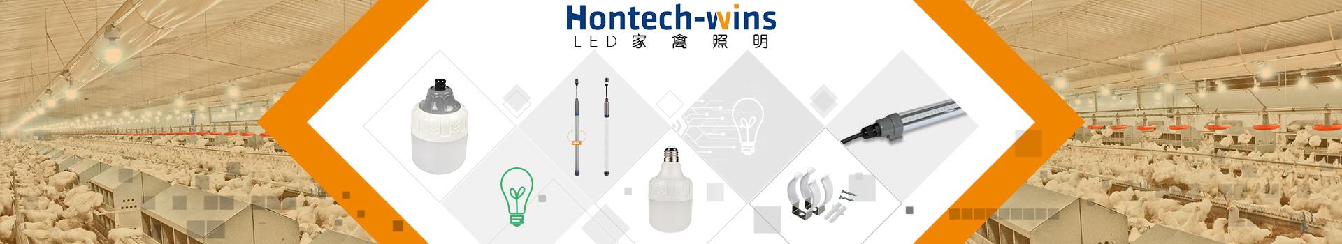 LED 家禽照明