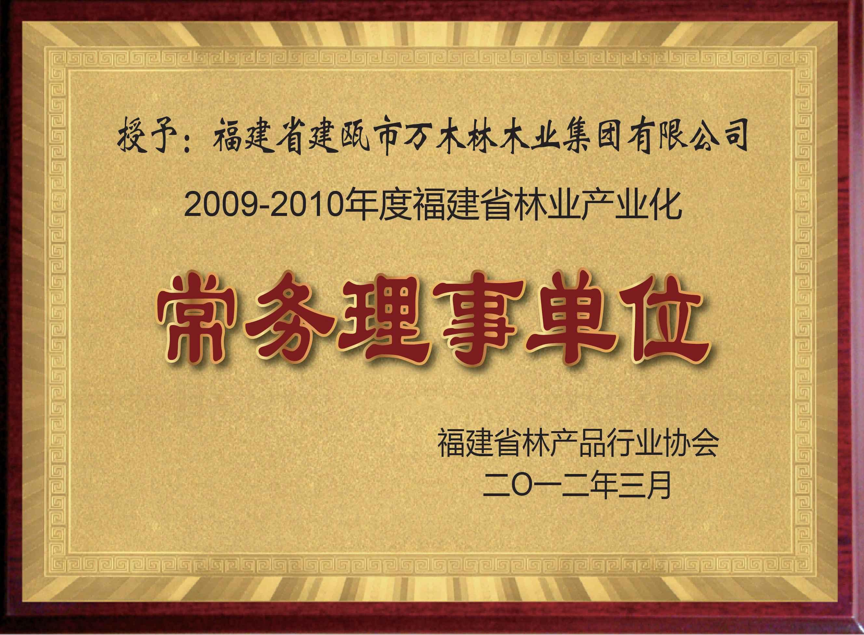 福建林产品行业协会常务理事单位