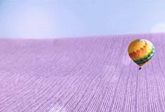 海澜之家年度创意广告,带你领略世界的良辰美景