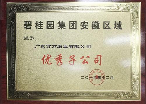 2016年度优秀子公司-碧桂园集团安徽区域
