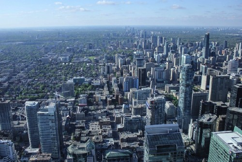 Employers emigrate from alberta