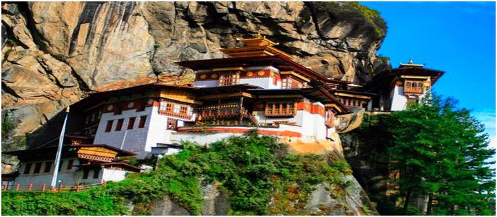 不丹12日观鸟之旅
