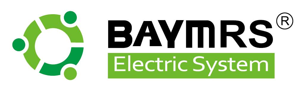 宝岩电气系统上海有限公司
