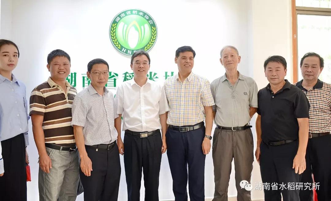 湖南省稻米协会揭牌仪式暨湘米品牌打造方案讨论会在湖南省水稻研究所举行