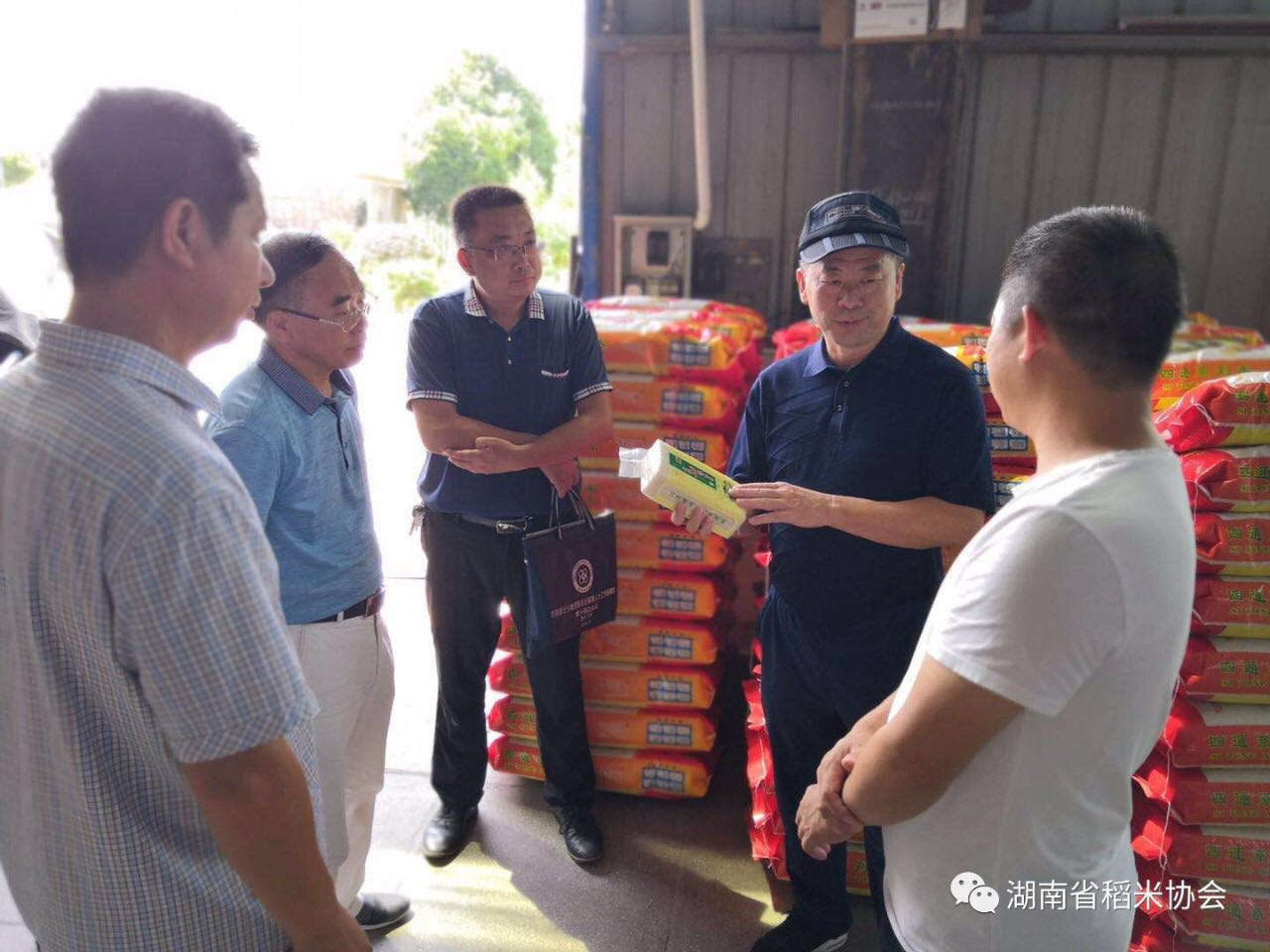 湖南省稻米协会到怀化市调研优质湘米品牌建设工作