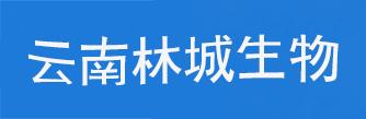 养蜂培训-云南林城生物科技有限公司