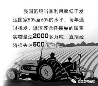 施用的肥料到底能被作物吸收多少?