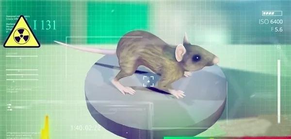 3D打印成功植入老鼠体内的甲状腺,植入人体指日可待