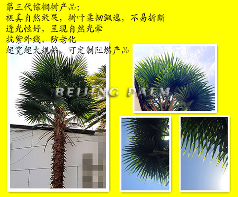 We develop a new kind of artificial washingtonia palm and date palm in 2018