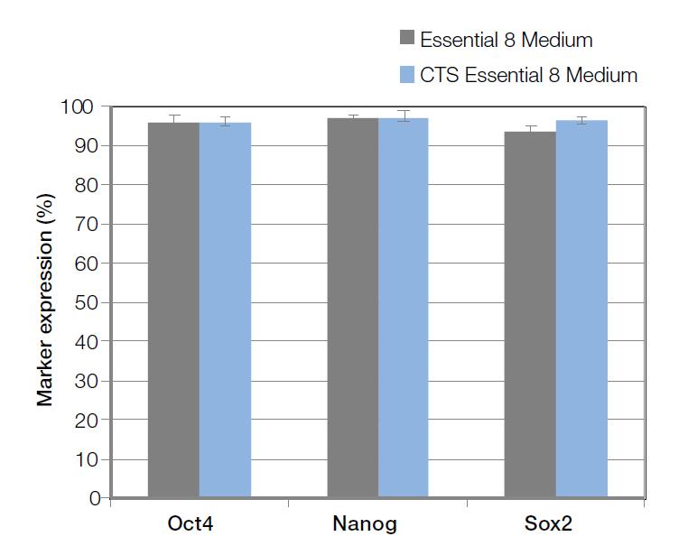 CTS Essential 8培养基