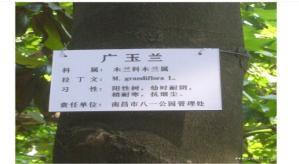 制作植物标牌
