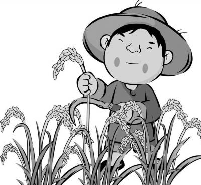 农民日报| 湖南:扩种再生稻信心从哪来-媒体聚焦