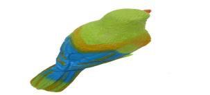 探究声控鸟