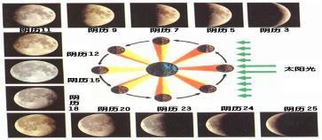 观察月相变化