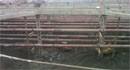 基坑開挖降水疏干效果