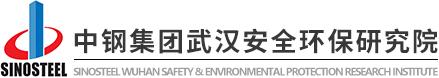 中钢集团武汉安全环保研究院有限公司