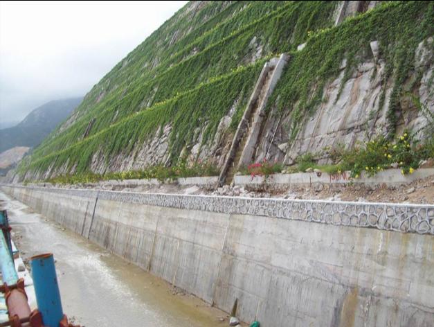 广东台山核电一期龙8国际平台入口水土保持龙8国际平台入口