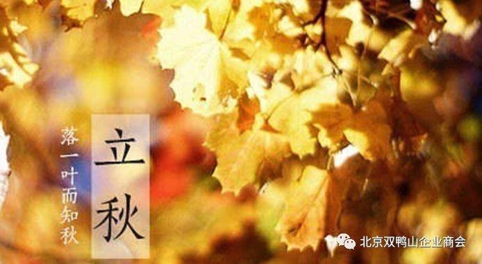 【节日专列】落一叶而知秋——立秋