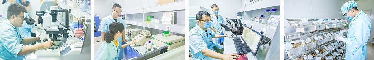 基因细胞治疗