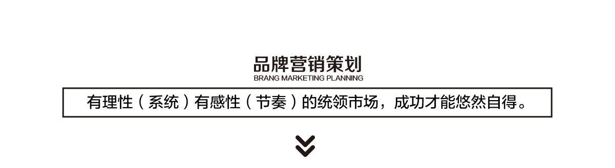 品牌营销策划