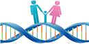 基因组导向