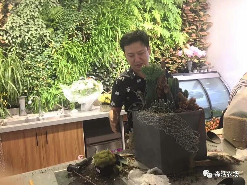 组合盆栽设计师 认证课程