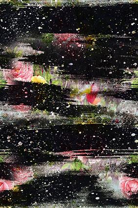 点缀星光抽线花卉