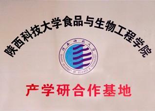 陕西科技大学-产学研合作基地