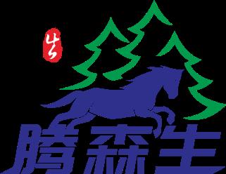 企业aeo认证-腾森生广州企业管理有限公司