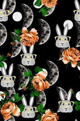 眼镜兔子花卉月牙