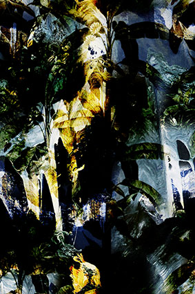 抽象艺术风景渲染花型