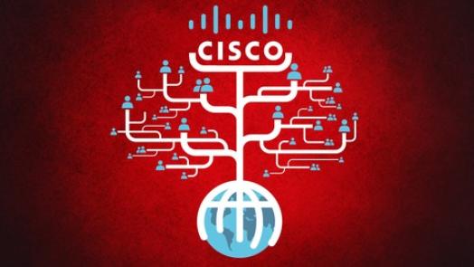 Cisco Networking CCNA OSPF