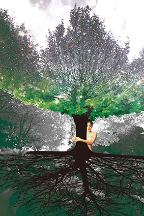 茂密美女大榕树根脉