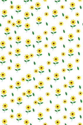 小碎花植物太阳花朵