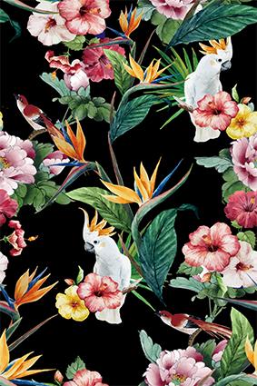 元素手绘植物花