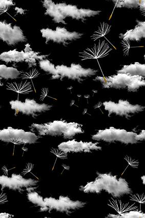 飘逸花蕊黑底白云