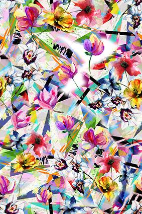 斑斓渐变色彩花卉