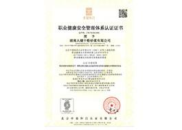 职业健康安全管理体系证书中文版