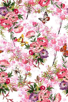 芬芳桂香粉嫩花窗